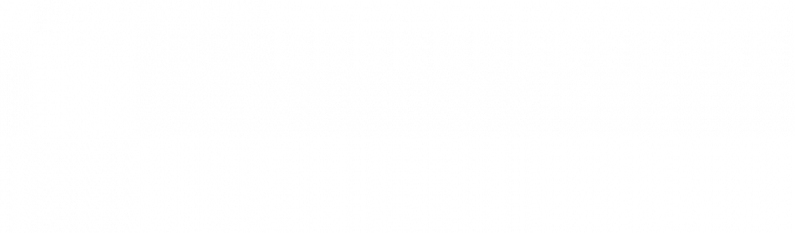 BOLIGDAGE MIDDELFART 15. – 16. februar 2020